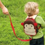 Family Organization – The Monkey
